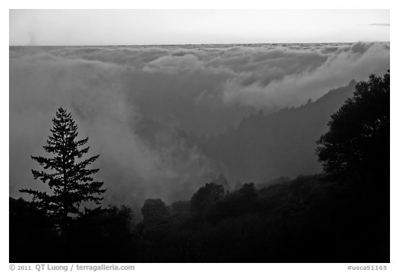 Sea of clouds at sunset above Santa Cruz Mountains. California, USA (black and white)