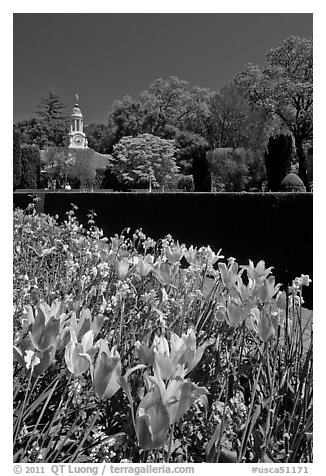 Flowers and garden shop, Filoli estate. Woodside,  California, USA (black and white)