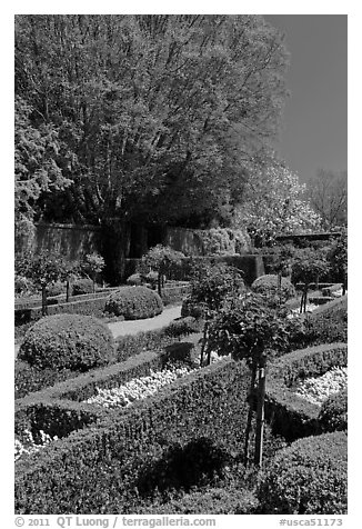 Hedges and flowers, walled garden, Filoli estate. Woodside,  California, USA (black and white)
