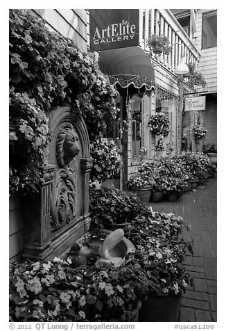 Art gallery decorated with flowers, Sausalito. California, USA (black and white)