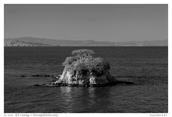 Rat Rock, China Camp State Park. San Pablo Bay, California, USA (black and white)
