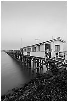 Pier on San Pablo Bay at sunset. San Pablo Bay, California, USA (black and white)