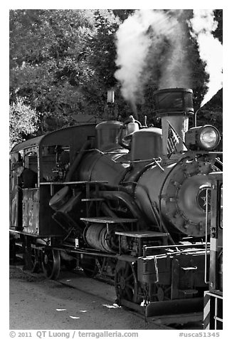 Steam locomotive, Roaring Camp Train, Felton. California, USA (black and white)
