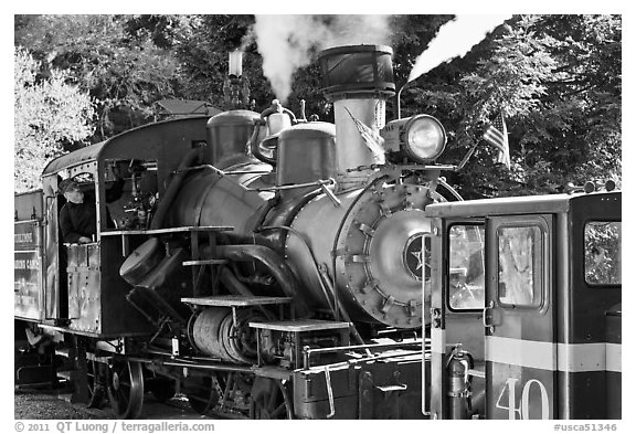 Roaring Camp and Big Trees Narrow-Gauge Railroad, Felton. California, USA (black and white)