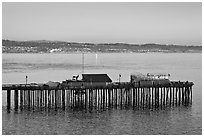 Capitola pier at sunset. Capitola, California, USA ( black and white)