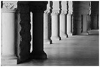 Columns in Main Quad. Stanford University, California, USA ( black and white)
