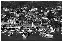 Harbor and houses on hillside, Avalon, Santa Catalina Island. California, USA (black and white)
