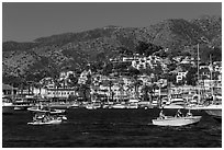 Avalon seen from harbor, Santa Catalina Island. California, USA (black and white)