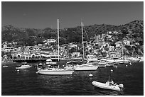 Avalon Bay harbor, Santa Catalina Island. California, USA (black and white)