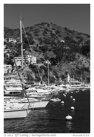 Yachts, Avalon harbor, Catalina Island. California, USA (black and white)