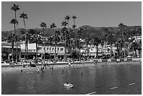 Avalon Bay beach, Santa Catalina Island. California, USA (black and white)