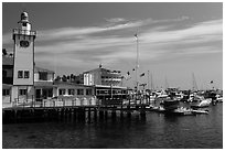 Yacht club and casino, Avalon, Catalina Island. California, USA (black and white)