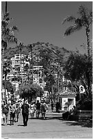 Street near waterfront, Avalon Bay, Santa Catalina Island. California, USA (black and white)