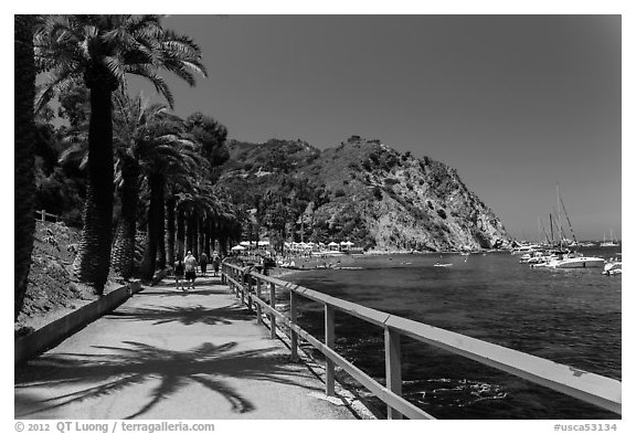 Waterfront promenenade, Avalon Bay, Catalina. California, USA (black and white)