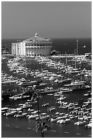 Catalina Casino and harbor, Avalon Bay, Santa Catalina Island. California, USA (black and white)