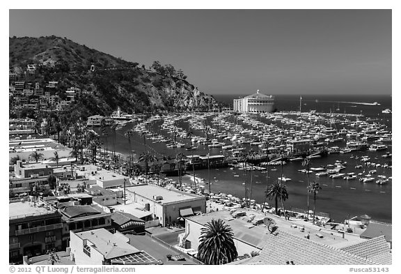 Avalon Bay from above, Avalon Bay, Catalina Island. California, USA (black and white)