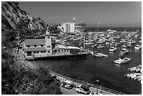 Yacht club, harbor, and Casino, Avalon, Catalina Island. California, USA (black and white)