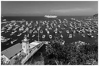 Avalon harbor from above, Avalon Bay, Catalina Island. California, USA (black and white)