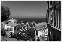 Hillside houses overlooking harbor, Avalon Bay, Santa Catalina Island. California, USA (black and white)