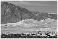 Kelso Sand Dunes at the base of Granite Mountains. Mojave National Preserve, California, USA ( black and white)