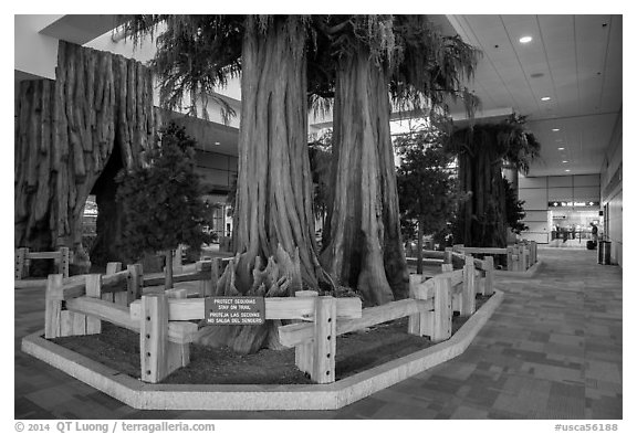 National park exhibit in concourse, Fresno Yosemite Airport. California, USA (black and white)