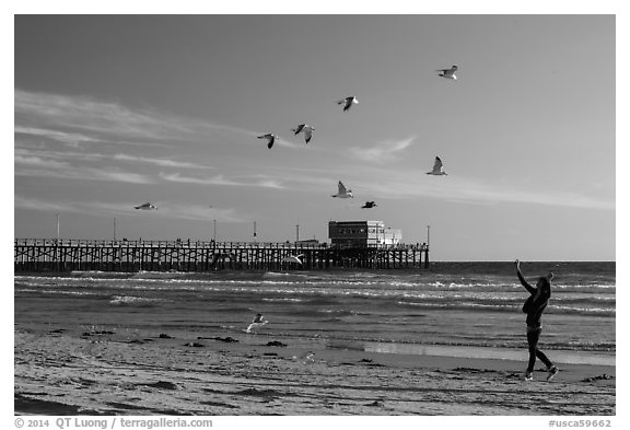 Woman and seagulls in front of Newport Pier. Newport Beach, Orange County, California, USA (black and white)