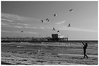 Woman and seagulls in front of Newport Pier. Newport Beach, Orange County, California, USA ( black and white)