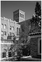 University of California at Los Angeles, Westwood. Los Angeles, California, USA ( black and white)