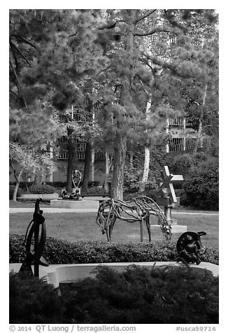 Sculpture Garden, University of California at Los Angeles, Westwood. Los Angeles, California, USA (black and white)
