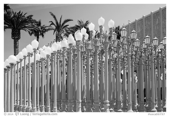 Urban Light by Chris Burden in front of LACMA. Los Angeles, California, USA (black and white)