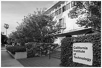 California Institute of Technology campus with sign. Pasadena, Los Angeles, California, USA ( black and white)