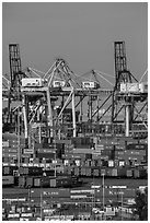 Shipping containers and cranes. Long Beach, Los Angeles, California, USA ( black and white)