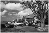 Seaport Village. San Diego, California, USA ( black and white)