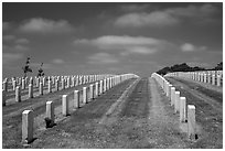 Headstones, Fort Rosecrans National Cemetary. San Diego, California, USA ( black and white)