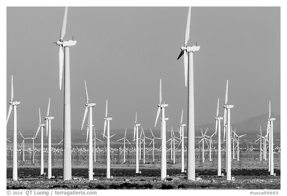 Wind farm, San Gorgonio Pass. California, USA (black and white)