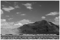 Freight train in desert. California, USA ( black and white)