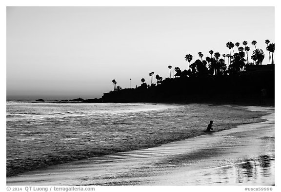 Black and white picture photo beach at sunset with silhouettes of palm trees and beachgoer laguna beach orange county california usa