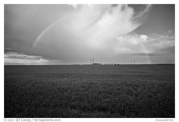 Pasture and rainbow in the spring. California, USA (black and white)