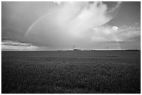 Pasture and rainbow in the spring. California, USA ( black and white)