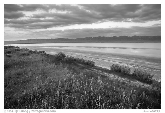 Soda Lake with reflections of Temblor Range. Carrizo Plain National Monument, California, USA (black and white)