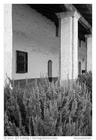 Flowers and gallery, Mission La Purísima. Lompoc, California, USA (black and white)