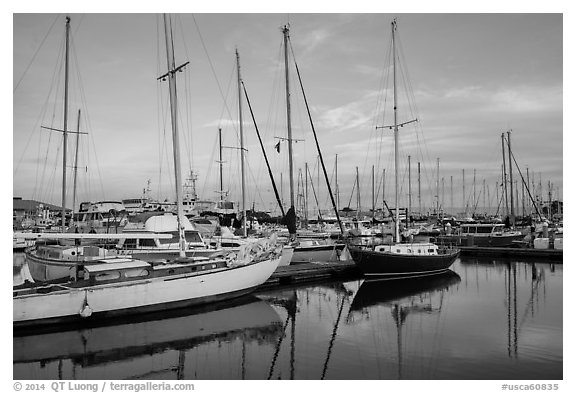 Yachts, Moss Landing. California, USA (black and white)