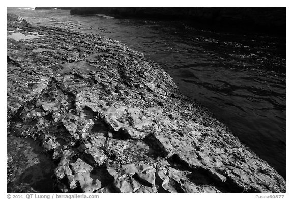 Rock slab and ocean channel, Montana de Oro State Park. Morro Bay, USA (black and white)