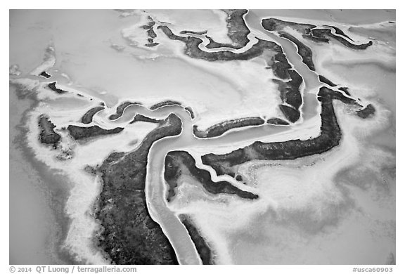 Aerial view of salt pond. Redwood City,  California, USA (black and white)