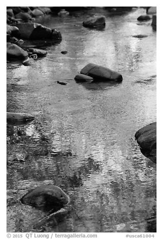 Boulders and green foliage reflection in river. California, USA (black and white)