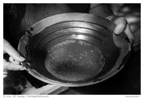 Hands holding pan with bits of gold, El Dorado County. California, USA (black and white)
