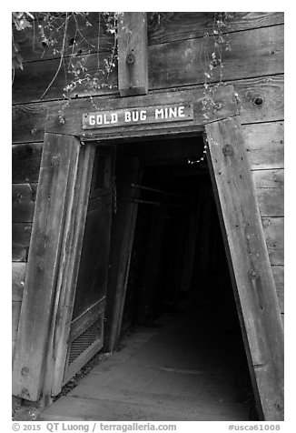 Entrance of historic Gold Bug Mine, Placerville. California, USA (black and white)