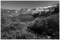 Wildflowers, stream, and lake, Twenty Lakes Basin, Inyo National Forest. California, USA ( black and white)
