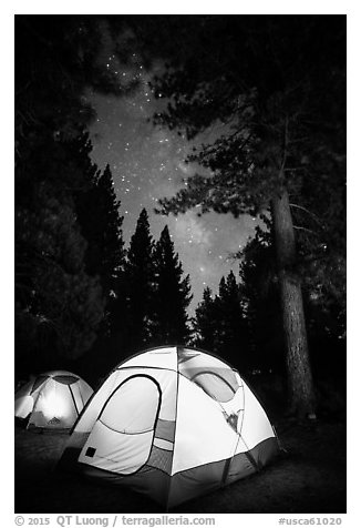 Lighted tents, forest, and Milky Way, Prosser Ranch Group Campground, Tahoe National Forest. California, USA (black and white)