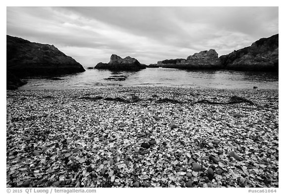 Beach covered with seaglass. Fort Bragg, California, USA (black and white)